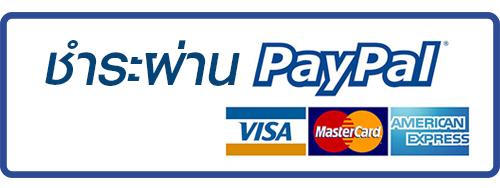 http://sassyp.lnwshop.com/payment/online