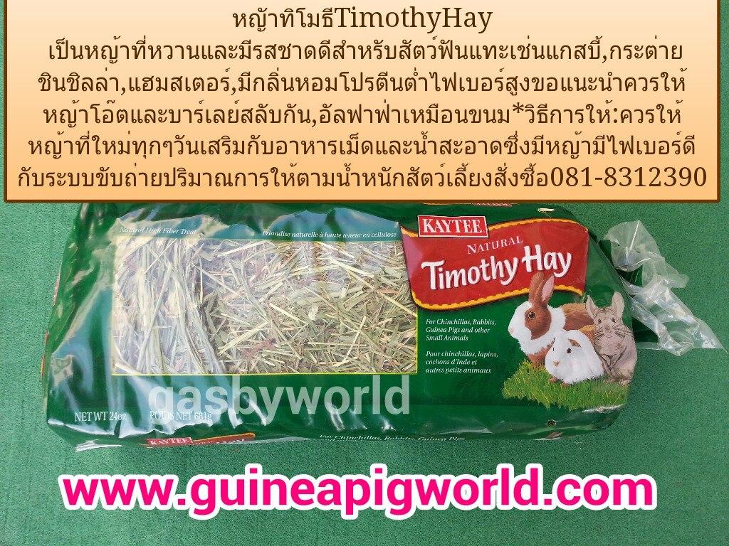 หญ้าทิโมธี Kaytee Timothy