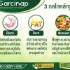 อาหารเสริมลดน้ำหนัก Garcinap กับสมดุล Block & Burn เพื่อลดน้ำหนักและลดสัดส่วน