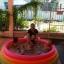 สระว่ายน้ำเป่าลม Intex (6 ฟุต) thumbnail 8