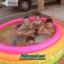 สระว่ายน้ำเป่าลม Intex (6 ฟุต) thumbnail 4