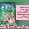 หญ้าออร์ชาร์ด Kaytee Orchard Grass