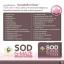 SOD G-Maze จี เมซ น้ำเด็ก thumbnail 5